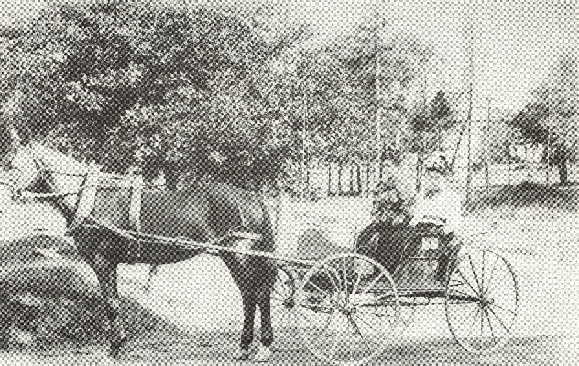 old black and white photo of horse, buggy and 2 female passengers wearing circa 1900 clothing