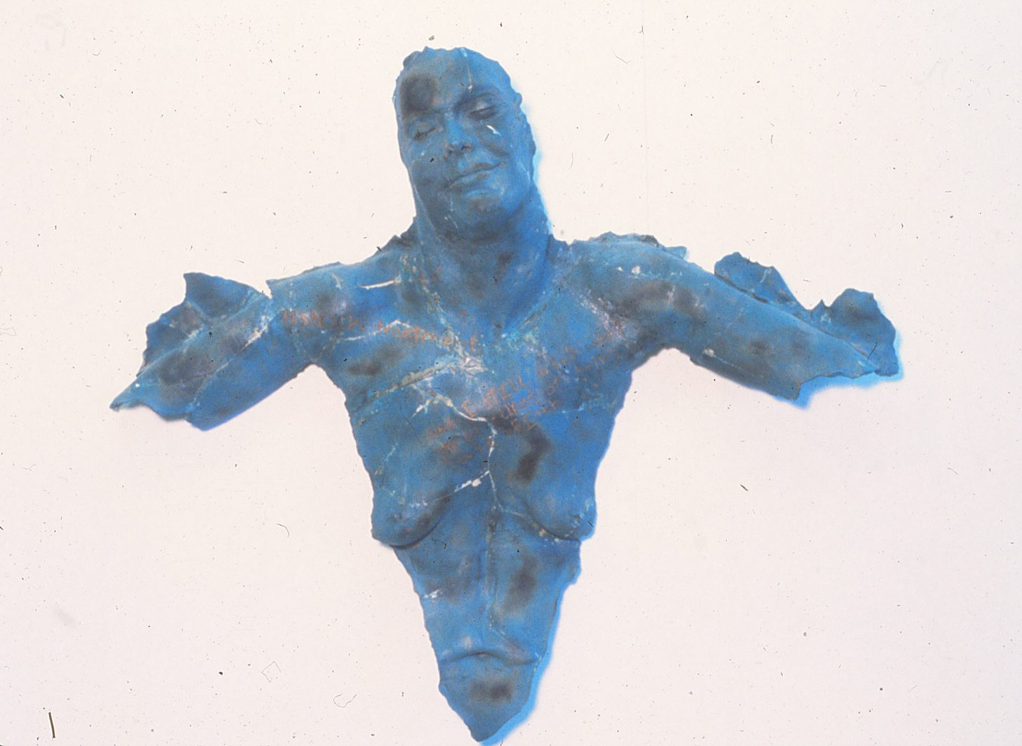 photo of blue naked woman's torso, woman is smiling or enduring